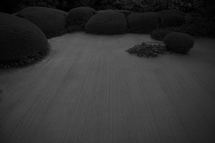 D800_SHISENDOU_01.jpg